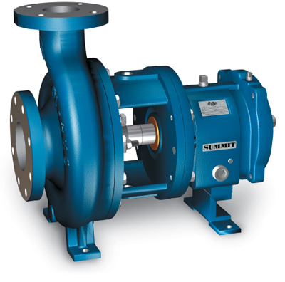 Summit Pump 2196ANSI Model